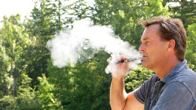 Sind E-Zigaretten für Haustiere unbedenklich?